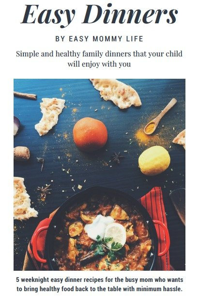easy one pot meal recipes for busy moms