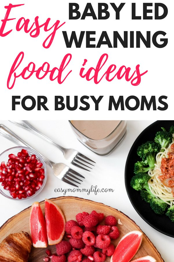 baby led weaning food ideas