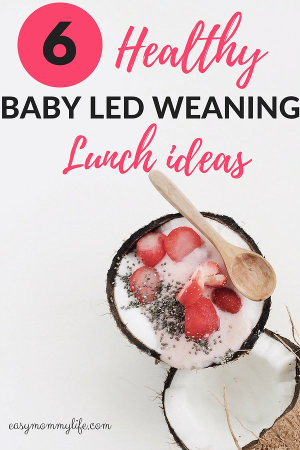 Baby led weaning lunch ideas