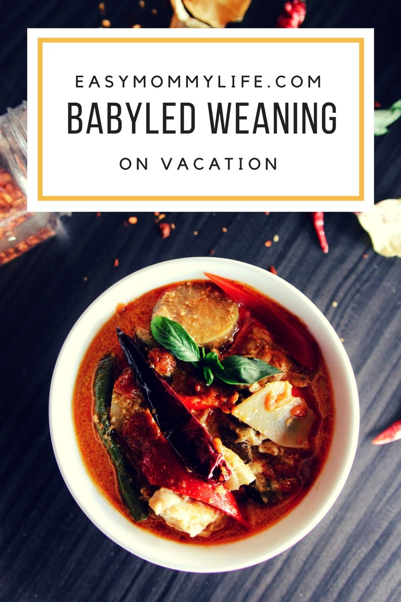 babyled weaning on vacation, bowl of thai soup